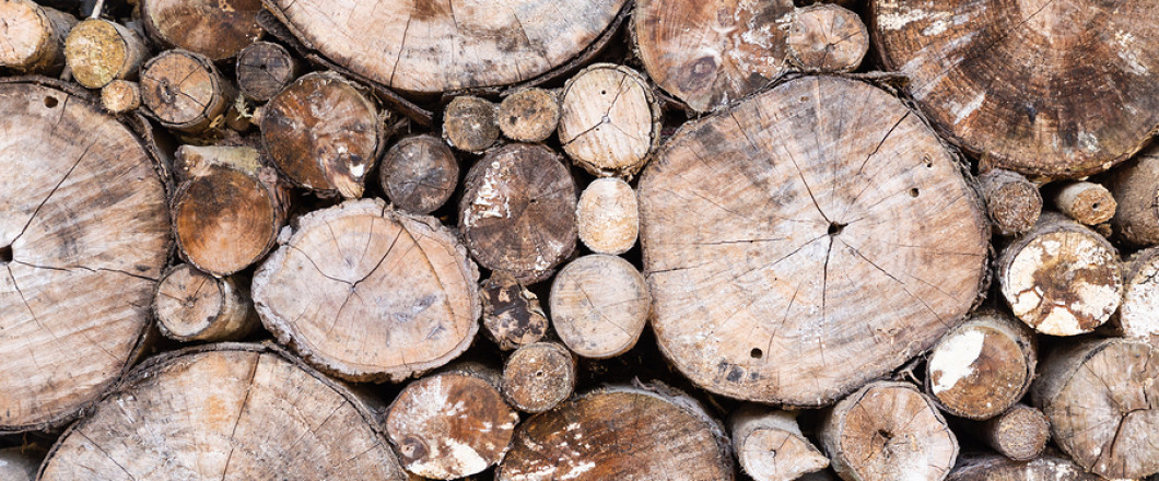 Tree Length Firewood For Sale